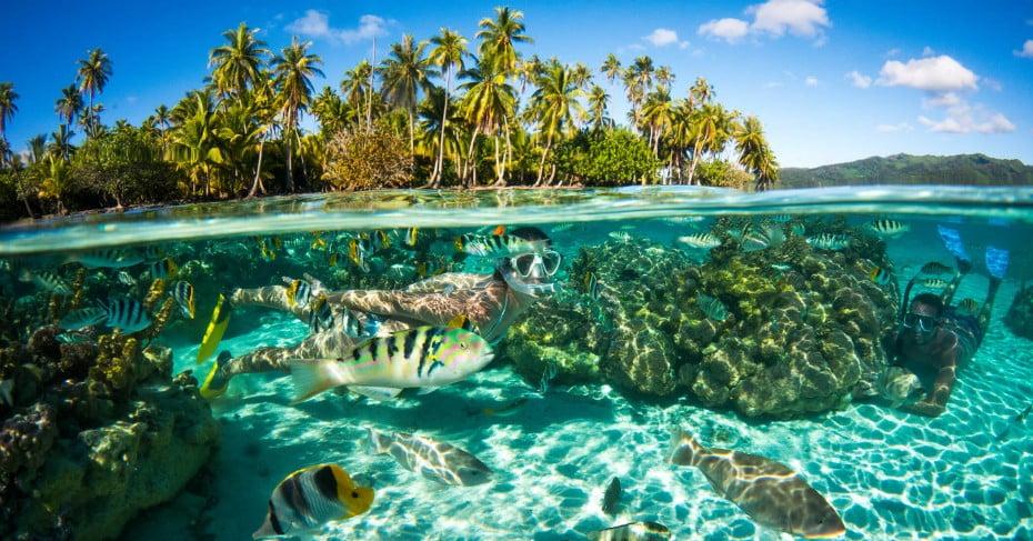 Woman snorkeling, Tahiti, Pacific Islands