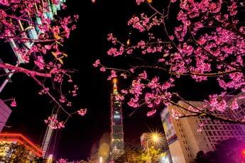 Taipei 101 by night, Taiwan