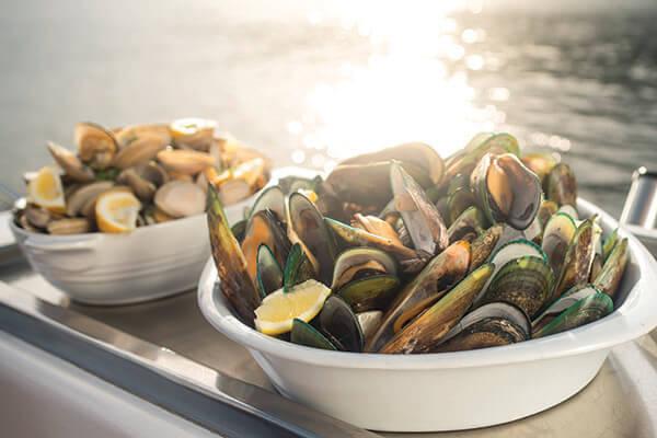 New Zealand - Green-lipped Mussels, Blenheim