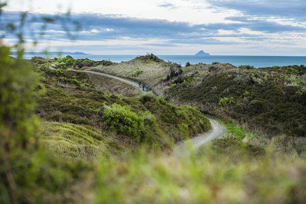 New Zealand - Motu Trails, Eastland