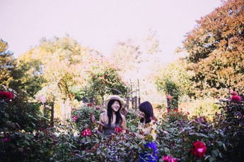 Girls in a Rose Garden, Christchurch, New Zealand